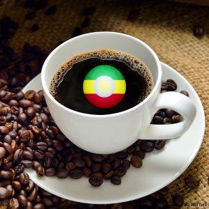 エチオピア イルガチャフィ