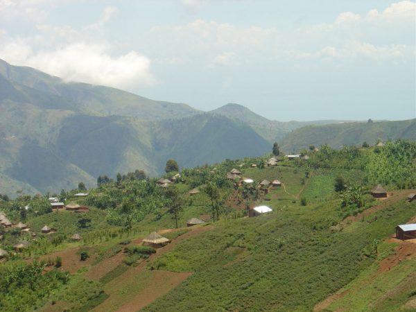 DR コンゴ 北キブ州 コーヒー産地