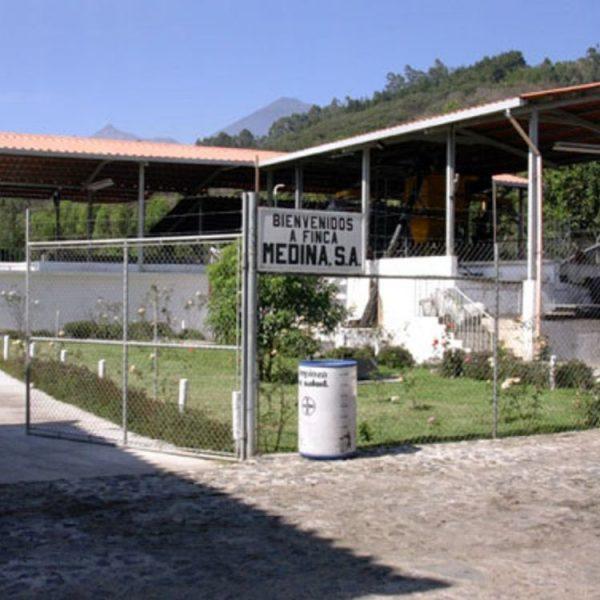 グアテマラ アルト・デ・メディナ農園 看板