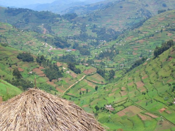 DRC カバレ - 景観