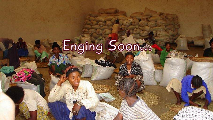 コーヒー豆「DRコンゴ カホンド 16/16」まもなく終了です。