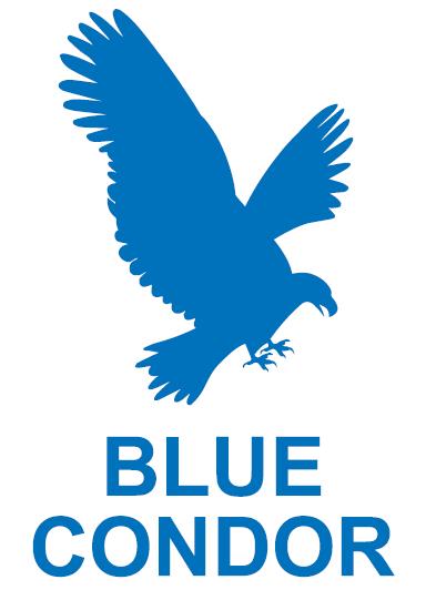 Peru Blue Condor