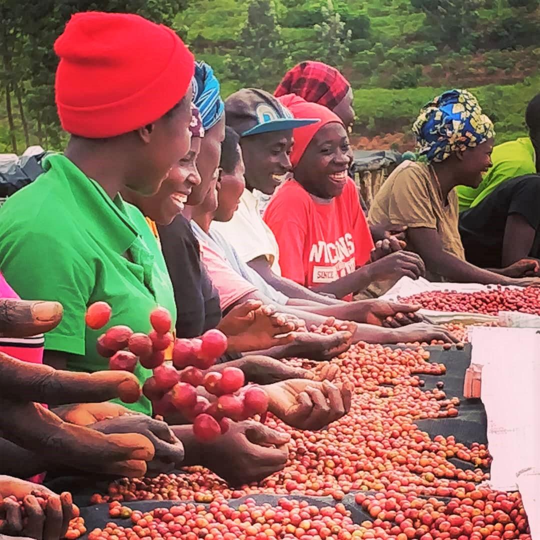 ルワンダの女性コーヒーファーマー